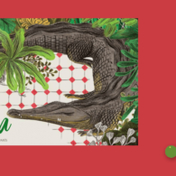 La caimana apaisado_Mejor en verde Elisa Yuste