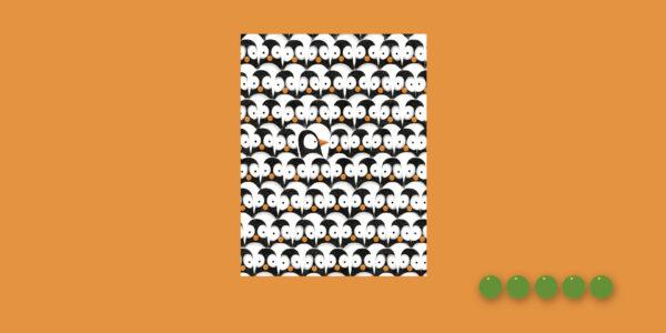 Los problemas de pingüino apaisado_Mejor en verde Elisa Yuste